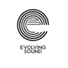 Evolving Sound: Composition and Mixing of trailer music for the cinema